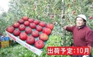 10月 大江の恵み 大玉紅玉約4.5kg・秀以上【山形りんご・大江町産】