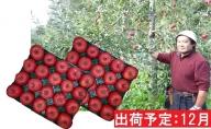 12月 大江の恵み 訳あり 家庭用サンふじ約10kg【山形りんご・大江町産】