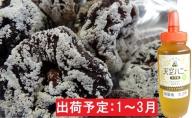 1~3月 干し柿20個ハチミツ300g 【山形県産】