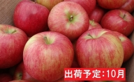 10月 シナノスイート約5kg・秀品 【山形りんご・大江町産】