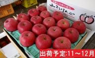 年内 贈答規格 サンふじ約5kg秀以上 【山形りんご】