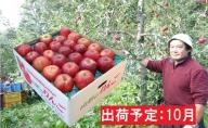 10月 大江の恵み 訳あり 家庭用紅玉約9kg【山形りんご・大江町産】