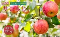 信州小諸産 サンふじりんご 家庭用 約5kg