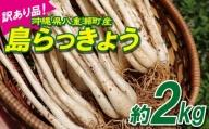 【訳あり品・100セット】沖縄県八重瀬町産 島らっきょう約2kg