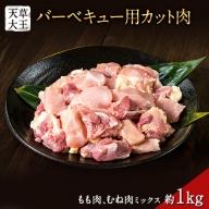 天草大王 バーベキュー用カット肉 1kg 熊本県産 【幻の地鶏】玉東町 もも肉 むね肉《60日以内に順次出荷(土日祝除く)》