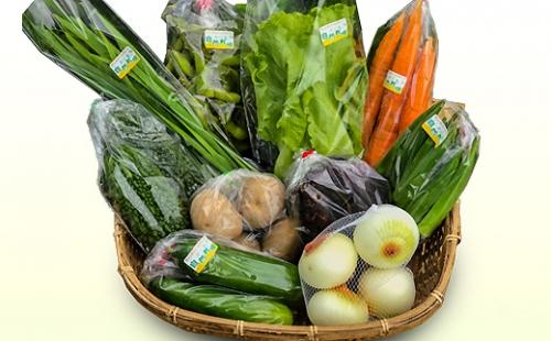 直売所直送 旬のおまかせ野菜セット 詰め合わせ10種 | au PAY ふるさと納税