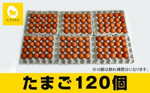 美ら卵養鶏場の新鮮で濃厚な卵<120個入り> | au PAY ふるさと納税