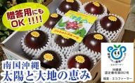 【2021年発送】<品評会受賞>南国の果物 パッションフルーツ2kg