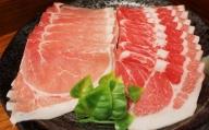 沖縄県 アグー豚 しゃぶしゃぶ すき焼きセット 800g