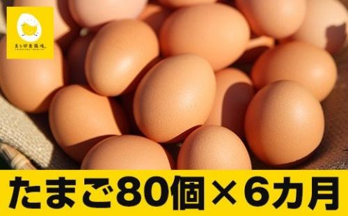 【定期便】6回お届け!美ら卵養鶏場の卵(各月80個) | au PAY ふるさと納税