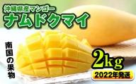 【2021年発送】南国の果物 沖縄県産マンゴー(ナムドクマイ)2kg