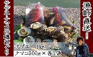 E2-58【先行予約】修福丸んサザエ・ナマコの磯めぐり