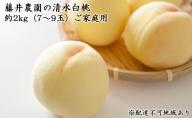 藤井農園 清水 白桃 約2kg(6~8玉)ご家庭用【配達不可:北海道・沖縄・離島】