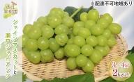 西江果樹園 岡山県産 シャインマスカット(1房)と瀬戸ジャイアンツ(2房)2kg以上