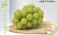 西江果樹園 岡山県産 シャインマスカット 1.4kg以上(2房)
