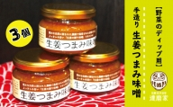 21-678.【野菜のディップ用】手造り生姜つまみ味噌(3個入り)