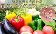 皆菜久留直売所厳選 旬の野菜の詰めあわせ[4~6種類]