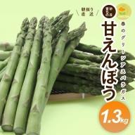 SA0470 グリーンアスパラガス「甘えんぼう」1.3kg