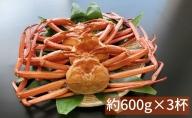 魚卸問屋のベニズワイガニ約600g×3杯(約1.8kg)