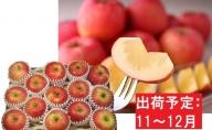 11~12月 訳ありこうとくりんご約4.5kg 【大江町産・山形りんご・大地農産】