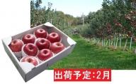2月 最高級 特選大玉サンふじ約3kg 【大江町産・山形りんご・大地農産】
