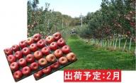 2月 訳あり 家庭用サンふじ約10kg 【大江町産・山形りんご・大地農産】