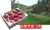 3月 最高級 特選大玉サンふじ約3kg 【大江町産・山形りんご・大地農産】
