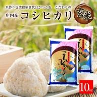 SA0784 令和3年産【玄米】コシヒカリ10kg(5kg×2袋)「農家直送」 KA
