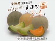 津軽産 減農薬栽培メロン 3~4玉 糖度16度以上保障!