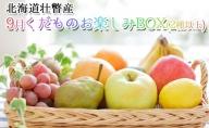 果樹園採れたての「9月 くだものお楽しみBOX(2種以上)」 ※9月配送限定