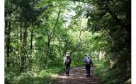 D-267 癒しの森の「森林セラピーガイドツアー」