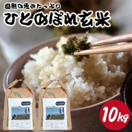 SA0780 令和2年産【玄米】ひとめぼれ10kg(10kg×1袋) HO