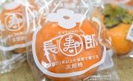 12月より順次出荷 鮮度保持袋入り テルの次郎柿『長寿郎』12玉~16玉入り