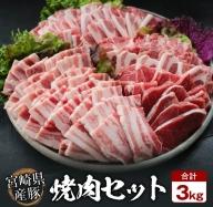 AC37-3M 豚焼肉バラエティー3kg&粗挽きウインナー180gセット《合計3kg以上》都農町加工品