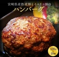 Aaa32-0402 宮崎県産熟成豚とイベリコ豚のハンバーグ120g×10個