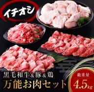 AB59 お楽しみ黒毛和牛&豚&鶏『万能お肉セット』総重量4.5kg
