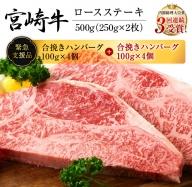 AD38 《肉》宮崎牛ロースステーキ(250g×2枚)&合挽きハンバーグ(100g×4個)セット《合計900g》