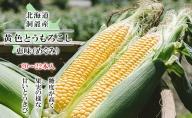 【朝採り】北海道洞爺湖町 宮内農園のとうもろこし「めぐみ」20~24本 約10kg