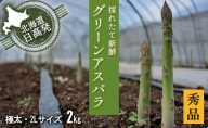 2L【秀品】約1kg×2箱グリーンアスパラ<北海道日高門別産>