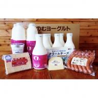北海道 のむヨーグルト500ml×6本・900ml×4本・食べるヨーグルト4個・チーズ3種・ソーセージ2袋セット