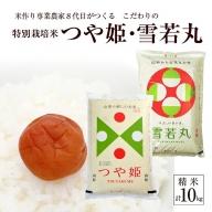 SA0789 令和3年産【精米】つや姫、雪若丸 計10kg(5kg×2袋)「農家直送」 KA