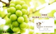 OEC KINGDOM ぶどう家 【ご家庭用】岡山県産 シャイン マスカット 2房(合計1kg以上)