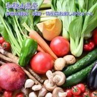 季節の野菜・果物・特産品お楽しみ詰め合わせセットA