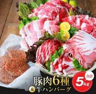 AC36-0628 お楽しみ『豚肉6種&牛ハンバーグセット』合計5kg(都農町加工品)