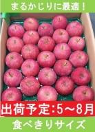 5~7月 りんご 5kg程度 小玉有袋ふじ【青森りんご・CA貯蔵・クール便】