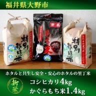ホタルと共生し安全・安心のホタルの里丁米コシヒカリ4kg・かぐらもち米1.4kg 新米