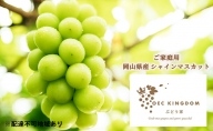 OEC KINGDOM ぶどう家 【ご家庭用】岡山県産 シャイン マスカット 3~4房(合計2kg以上)