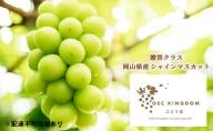 OEC KINGDOM ぶどう家 岡山県産 シャイン マスカット 1房(500g以上)贈答クラス
