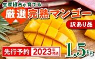 【訳あり品】生産組合が育てる厳選・完熟マンゴー約1.5kg