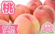 「先行予約」錦町産 桃 約2kg 5玉~8玉 2021年6月より順次出荷【配送不可:離島】